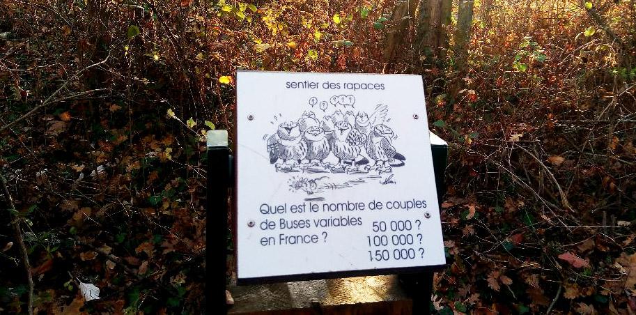 Sentier des rapaces, Saint-Cyr au Mont d'Or – Photo ©ET