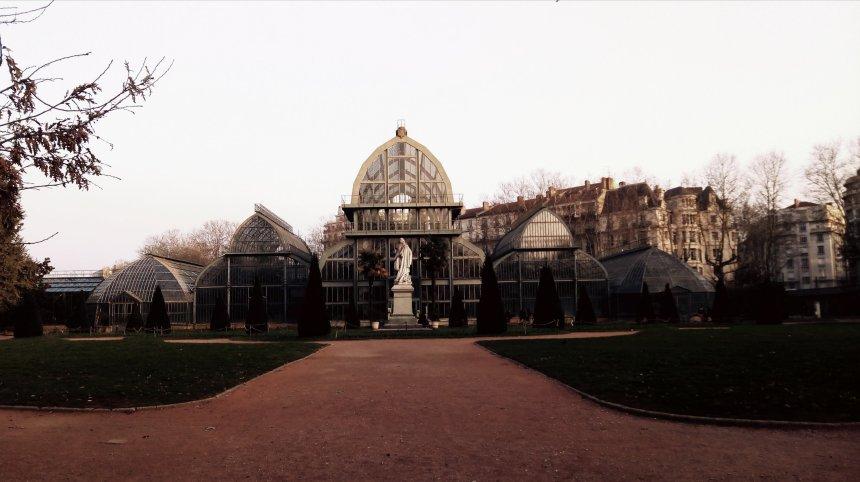 Roseraie du Parc de la Tête d'Or, Lyon ©ET