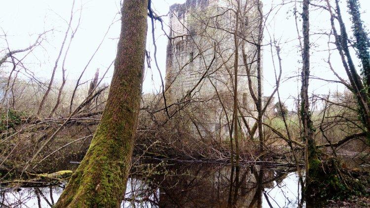 Chateau de Thomas II, Bourget du Lac ©ET