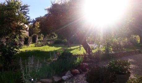 teteenlair_jardin