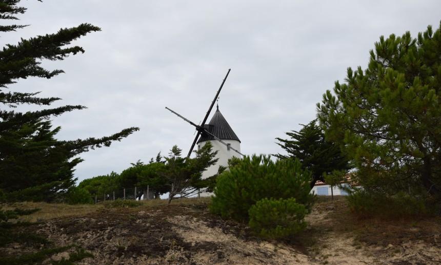 Moulin de la bosse de l'Epine, Noirmoutier ©ET